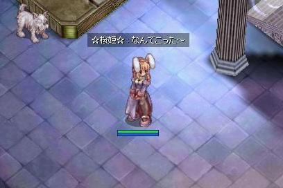 20060916103315.jpg