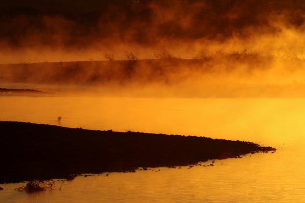 朝霧の河畔2