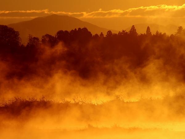朝霧の河畔3