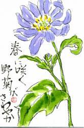 nogiku haru murasaki