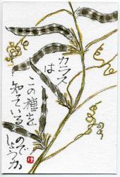 karasunoenndou kuro