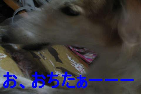 IMG_2050.jpg