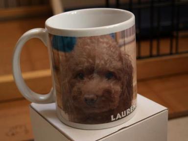 オリジナルマグカップ♪
