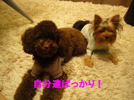 LIZ&LUNA