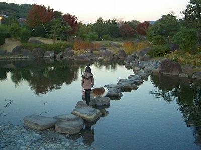 2007,11,24竹2