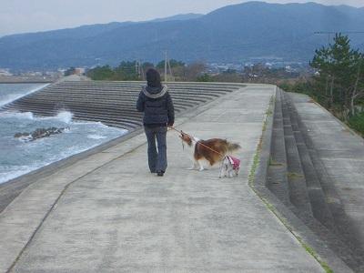2007,12,23堤防