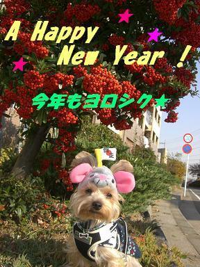 テト新年挨拶