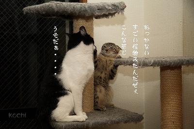 s-IMG_7572.jpg