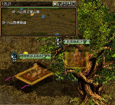 4-1 タトバ山頂上千年を経た木