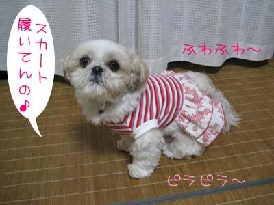 IMG_0699・スカート
