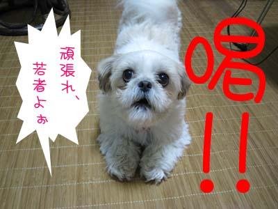 IMG_0604・喝