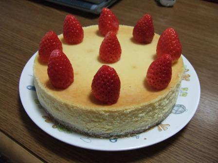 キャラメルファッジチーズケーキ