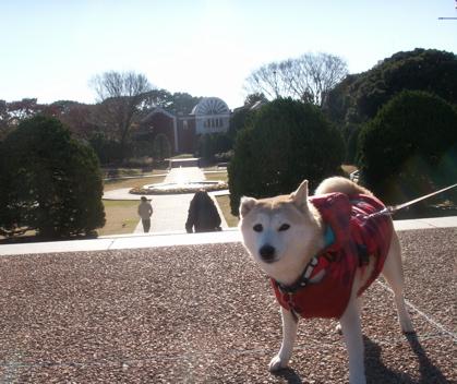 横浜散歩09