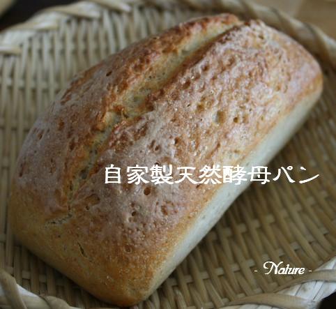 自家製天然酵母パン1