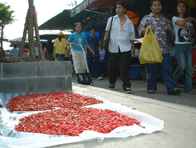 タイ路上で干される唐辛子