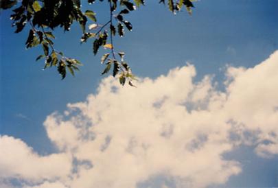 20060930165404.jpg