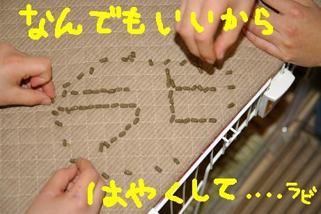 1_20071215092224.jpg