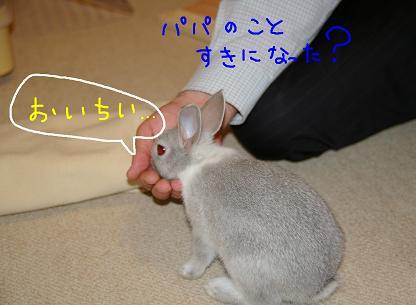 2_20071127044639.jpg