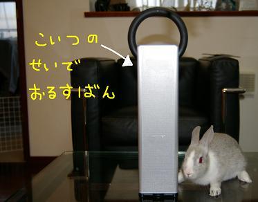 2_20071209062551.jpg