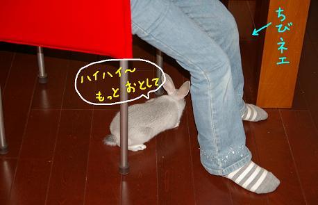 3_20071212103453.jpg