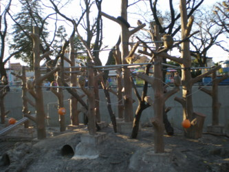 inokashira-zoo12.jpg