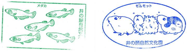 inokashira-zoo18.jpg