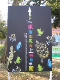 ueno-zoo1.jpg