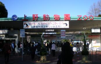 ueno-zoo3.jpg