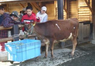 ueno-zoo47.jpg