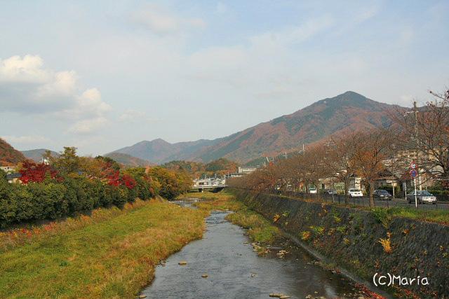 0712kamogawa003.jpg