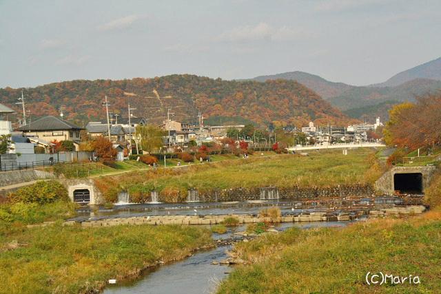 0712kamogawa004.jpg