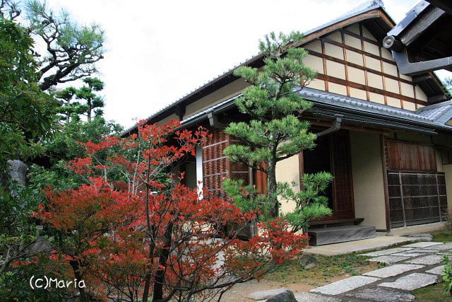3-0711souken006.jpg