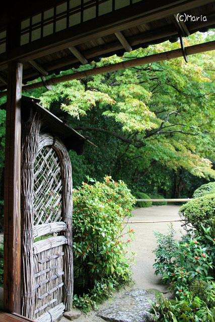 12-07shisendou009.jpg