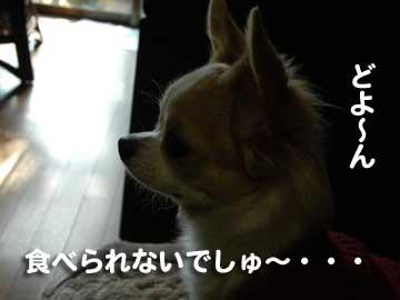 07marine0105_5