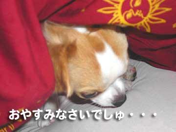 おやすみまりん