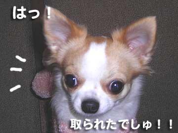07marine0111_9