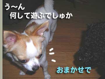 07marine0115_2