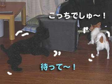 07marine0115_5