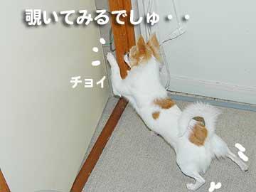 07marine0221_3