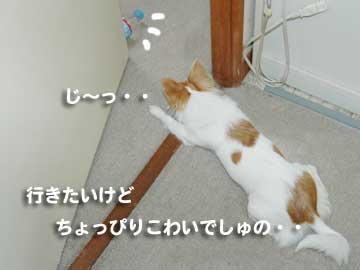 07marine0221_9