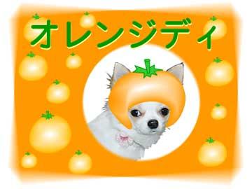 オレンジまりん