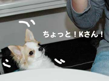 07marine0518_3
