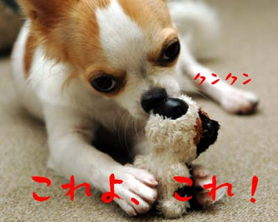 犯人まりん4