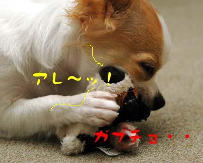 犯人まりん5