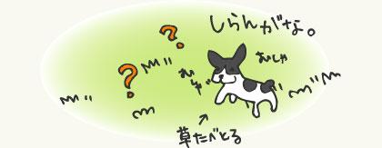 manga2_4.jpg