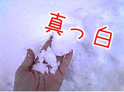 20080106194621.jpg