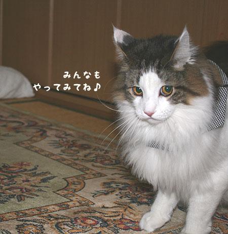 20080104095725.jpg