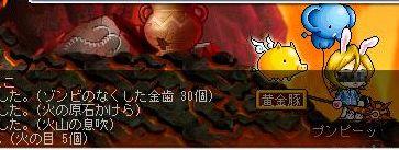 20071126111531.jpg