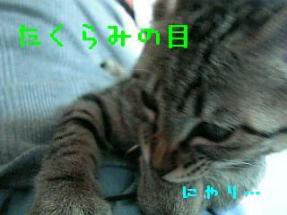 06-07-09_17-155.jpg