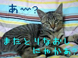 06-07-12_18-111.jpg
